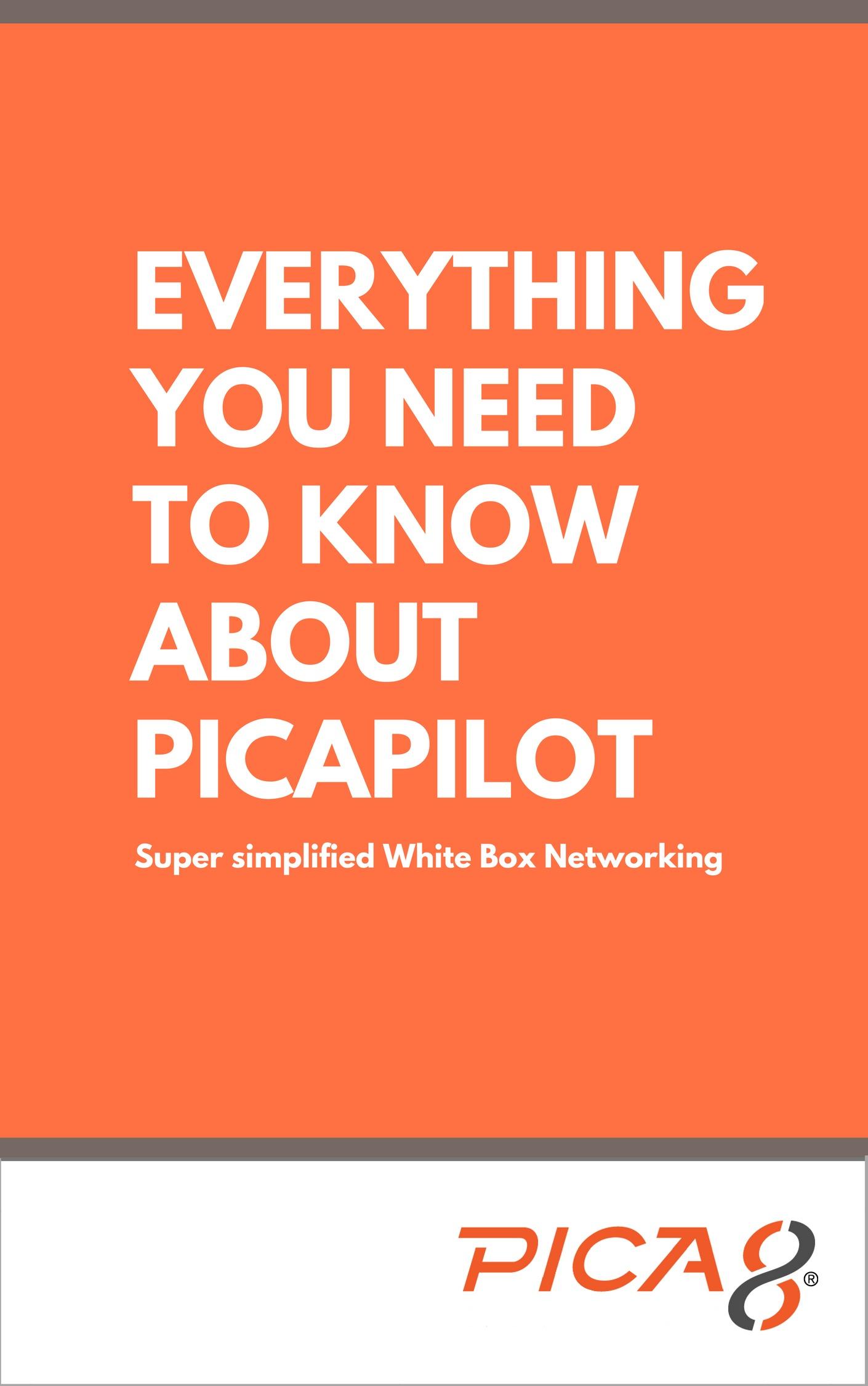 PicaPilot_LP_image-3